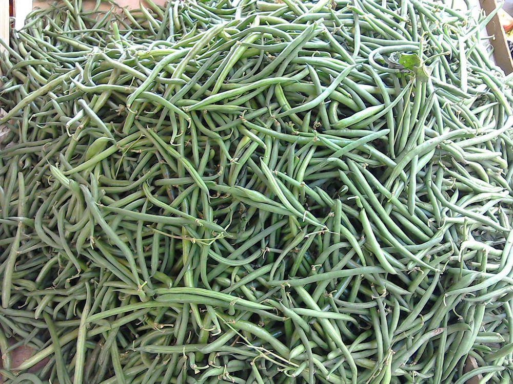 Very thin beans!
